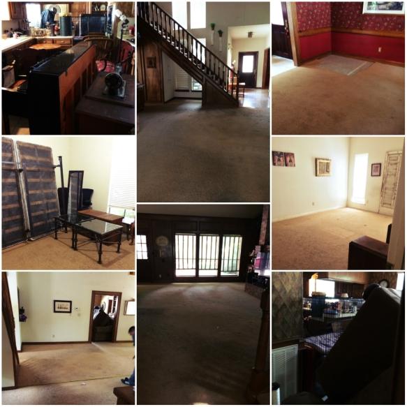 carpet_collage1