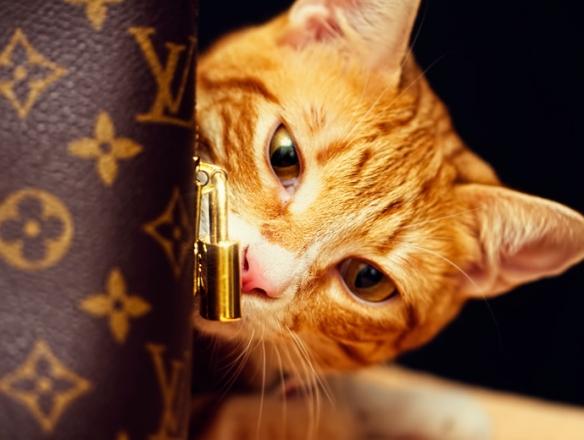art bag cat 2