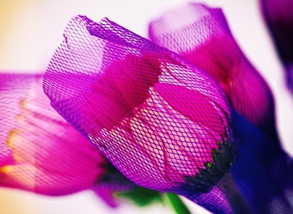 flowerya