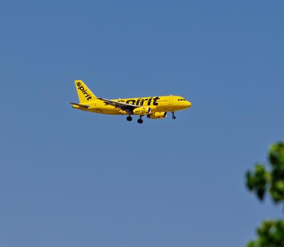 Yellow Spirit